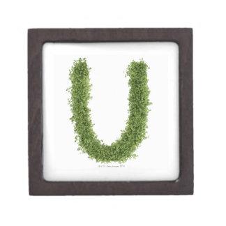 白い背景のcressの「U」に文字を入れて下さい、 ギフトボックス