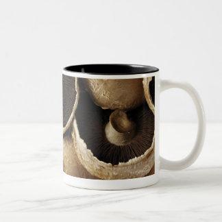 白い背景のPortobelloのきのこ ツートーンマグカップ