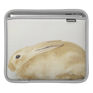 白い背景4のベージュバニーウサギ iPadスリーブ