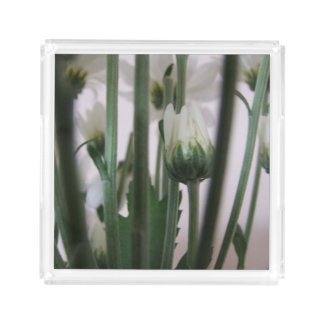 白い花のアクリルの香水の皿 アクリルトレー