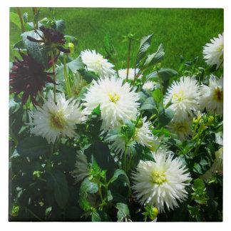 白い花のタイル タイル