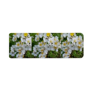 白い花のテーマのラベル ラベル