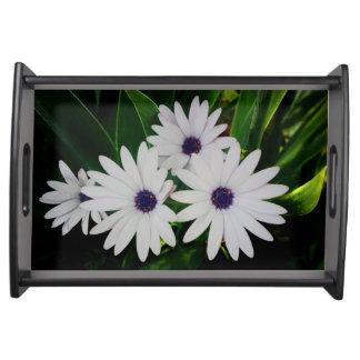 白い花のトレイ トレー