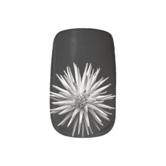 白い花の黒の背景 ネイルアート