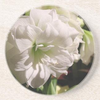 白い花 コースター
