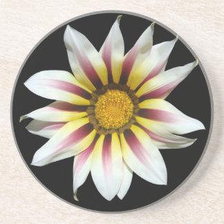 白い花 敷物