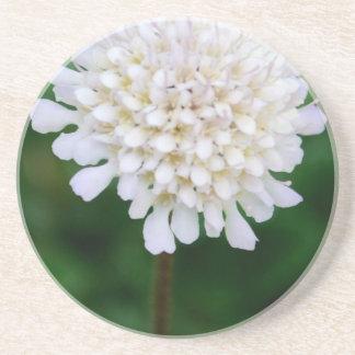 白い花 飲み物用コースター