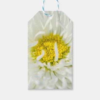 白い英国のデイジーの花 ギフトタグ