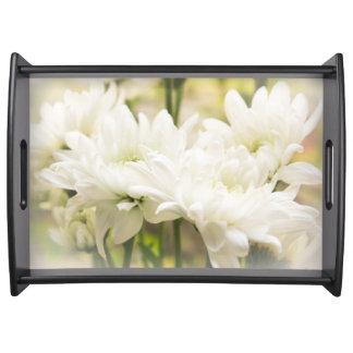 白い菊によってはトレイが開花します トレー
