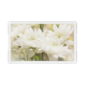 白い菊によっては虚栄心の   皿が開花します アクリルトレー