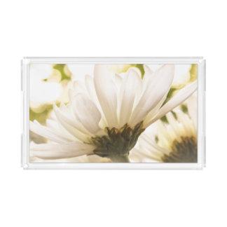 白い菊の栄光の虚栄心の皿 アクリルトレー