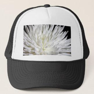 白い菊の花のミイラの花の写真 キャップ