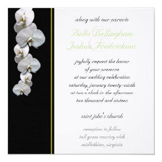 白い蘭の結婚式招待状5.25x5.25 13.3 スクエアインビテーションカード