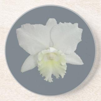 白い蘭の花 サンドストーンコースター
