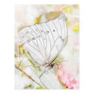 白い蝶水彩画 ポストカード