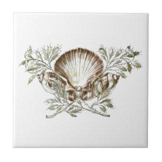 白い貝 タイル