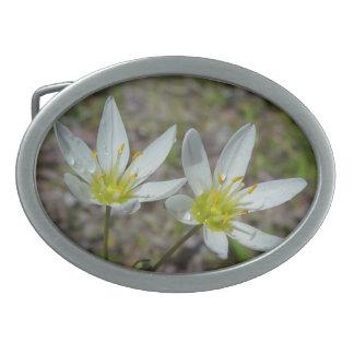 白い野生の花のベルトの留め金 卵形バックル