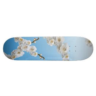 白い韓国の桜 スケートボードデッキ