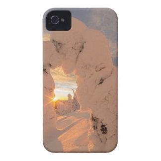 白い魚の範囲の雪の幽霊 Case-Mate iPhone 4 ケース