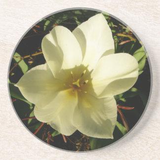 白い チューリップ 花嫁
