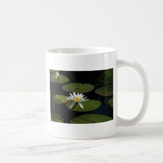 白い《植物》スイレンのマグ コーヒーマグカップ