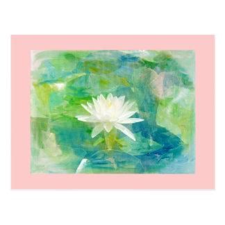 白い《植物》スイレンの花 ポストカード