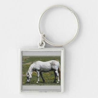 白い/灰色の馬 キーホルダー