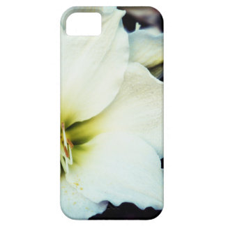 白いLillyの花のiPhone 5の箱 Case-Mate iPhone 5 ケース