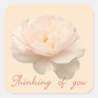 白およびピンクのバラ スクエアシール