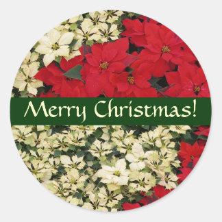 白くおよび赤いポインセチアのクリスマスのステッカー ラウンドシール