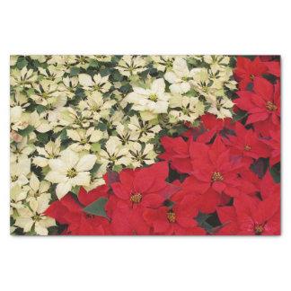 白くおよび赤いポインセチアIの休日の花柄 薄葉紙
