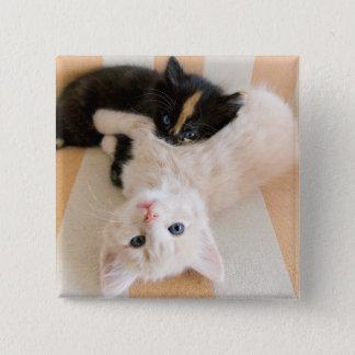 白くおよび黒い子ネコ 缶バッジ