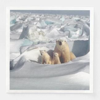 白くまの母カブスの北極野性生物のナプキン