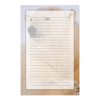 白くま、で休むUrsusのmaritimus 便箋