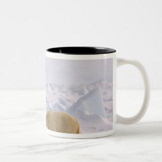 白くま、Ursusのmaritimus、荒い氷の組 ツートーンマグカップ