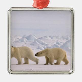 白くま、Ursusのmaritimus、荒い氷の組 メタルオーナメント