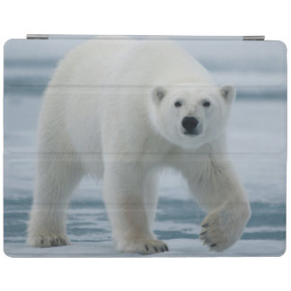 白くま、Ursus Maritimusの大人 iPadスマートカバー