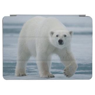 白くま、Ursus Maritimusの大人 iPad Air カバー