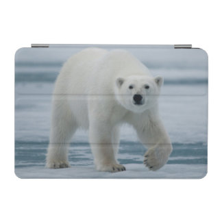 白くま、Ursus Maritimusの大人 iPad Miniカバー