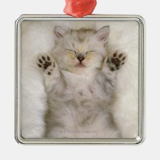 白く柔らかいカーペットで眠っている子ネコ高く メタルオーナメント