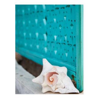 白く、ピンクのジャマイカの海の貝は単独で坐ります ポストカード
