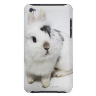 白く、黒いおよび茶色のウサギ Case-Mate iPod TOUCH ケース