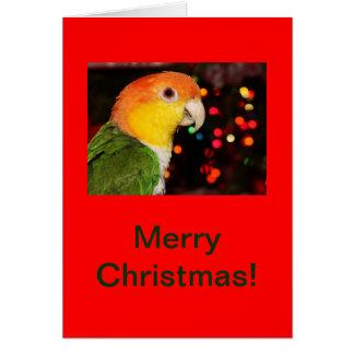 白によって膨らまされるシロハラインコのオウムのメリークリスマス カード