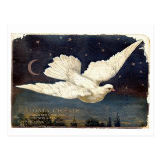 白の鳩 ポストカード