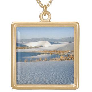 白は国有記念物、横断砂丘3を紙やすりで磨きます ゴールドプレートネックレス