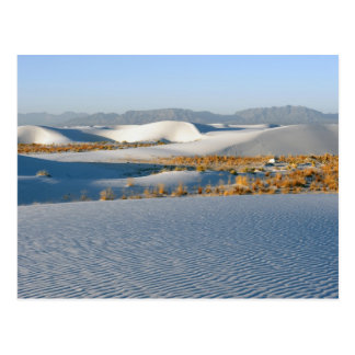 白は国有記念物、横断砂丘3を紙やすりで磨きます ポストカード