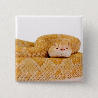 白子の西部のダイヤガラガラヘビ(ガラガラヘビA 5.1CM 正方形バッジ