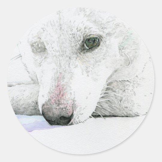 白柴犬シール ラウンドシール