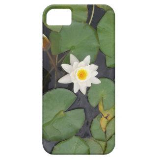 白濁水Lilly iPhone SE/5/5s ケース