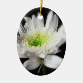白熱[赤熱]光を放つで白い菊6 セラミックオーナメント